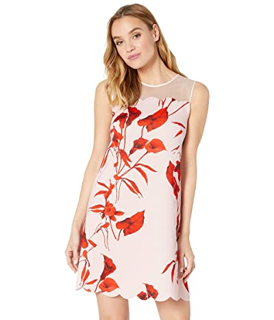 Ted Baker Jaazmin Dress (Pale Pink) Women