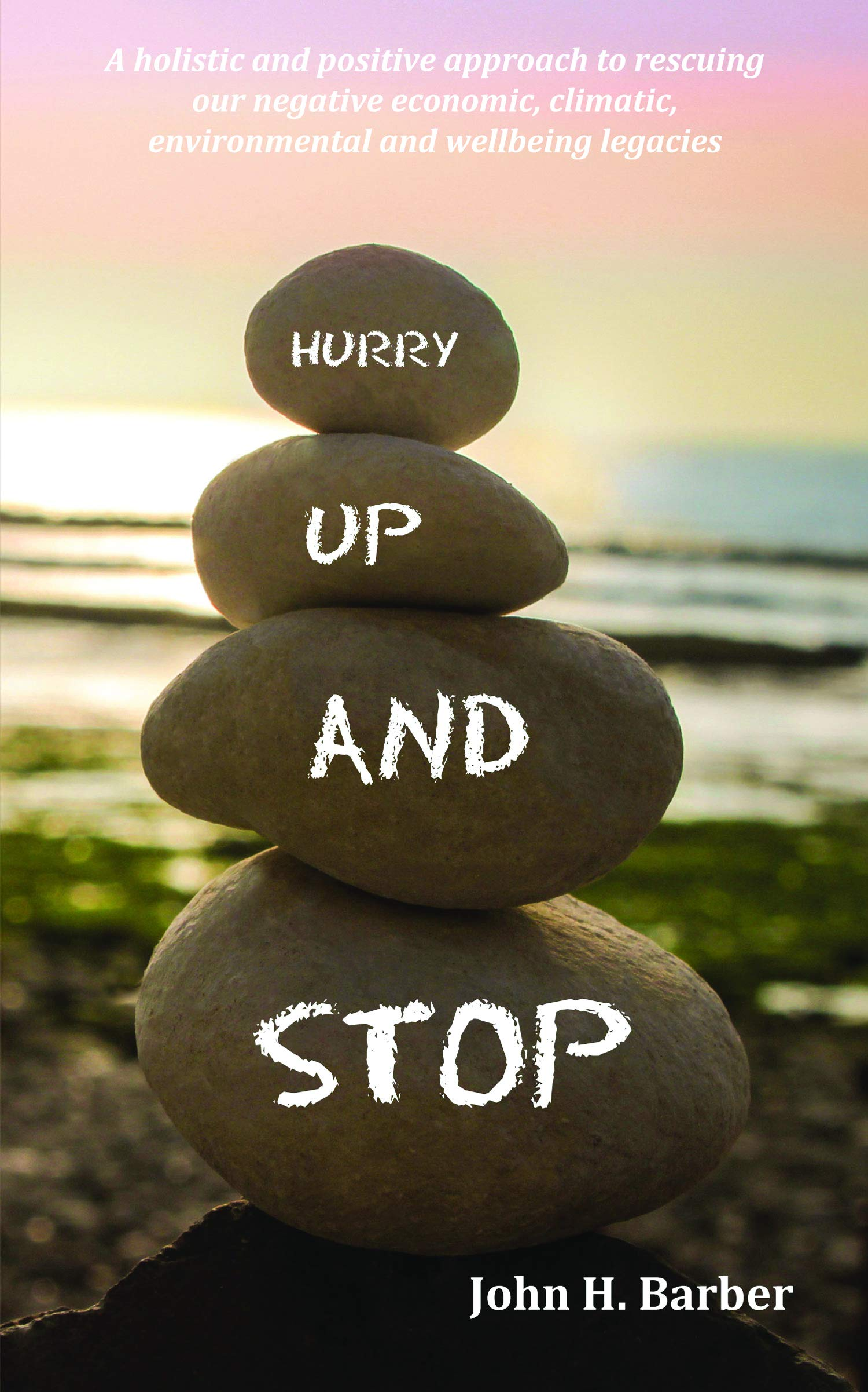 Hurry Up and Stop: A holistic and positive approach to rescuing our negative economic, climatic, environmental and wellbeing legacies