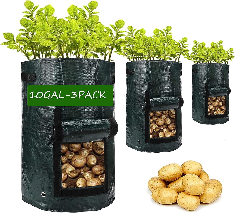 Potato-Grow-Bags 3 Pack Arlington Mall 10 Gallon safety Garden Vegetable Planter with
