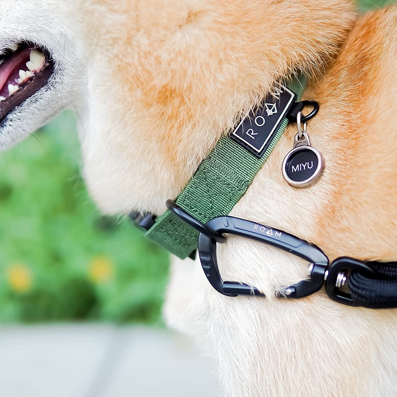 2.ROAM Premium Dog Collar