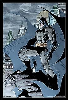 Trends International Batman Cape, 22.375