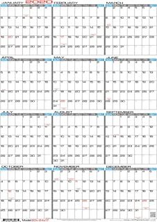 "JJH Planners - Laminated - 24"" X 17"" Medium 2020 Erasable Wall Calendar - Vertical 12 Month Yearly Annual Planner (20v-24x17)"