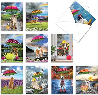 The Best Card Company - 10 Blank Dog Greeting Cards for All Occasions (4 x 5.12 Inch) - Raining Dogs AM6823OCB-B1x10