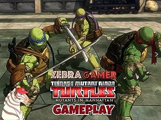 teenage mutant ninja turtles promo