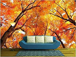 wall26 - Maple Tree in Autumn - Removable Wall Mural   Self-Adhesive Large Wallpaper - 100x144 inches