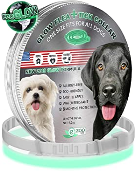Adjustable and Natural Flea Collar with 12 Months Flea and Tick Prevention Waterproof Safe and Effective Flea and Tick Control Collar for All Dog Sizes GROTAUS Flea and Tick Collar for Dogs