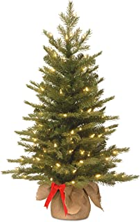 National Tree 3 Foot Feel Real Nordic Spruce Tree with 50 Warm White Battery Operated LED Lights with Timer in Burlap (PENS3-357-30-BS)