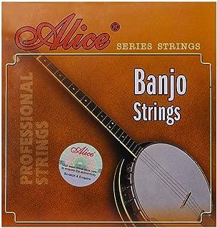 Best banjo strings 5 Reviews