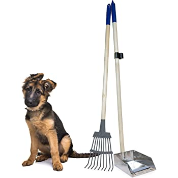 """Spotty Pooper Scooper Durable Solid Wood Handle Metal Poop Tray with Rake 36.75"""" Long Handled Scoop   Great for Large or Small Dogs   No Assembly Required   Better for The Environment Than Plastic"""