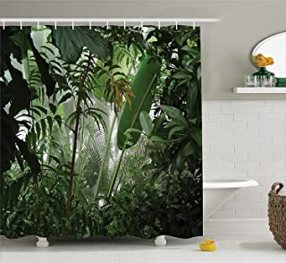 TYANG Rainforest Decorations Shower Curtain Set,Tropical Rainforest Preservation Humidity Palm Tree Wild Environment Misty Nature,Bathroom Accessories,Green 4872 inches