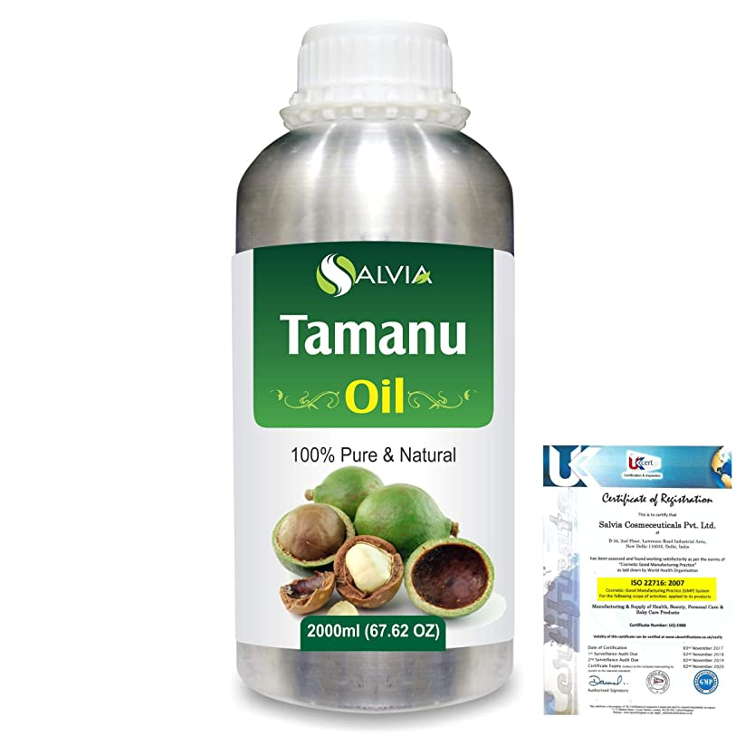 損失遺産シマウマTamanu (Calophyllum inophyllum) Natural Pure Undiluted Uncut Carrier Oil 2000ml/67 fl.oz.