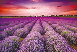 CSFOTO 5x3ft Background for Stunning Landscape with Lavender Field at Sunset Photography Backdrop Purple Flower Romantic Wedding Holiday Tourism Vacation Trour Photo Studio Props Polyester Wallpaper