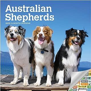 Australian Mini Shepherds Calendar 2020 Set - Deluxe 2020 Australian Shepherds Wall Calendar with Over 100 Calendar Stickers (Ausssie Gifts, Office Supplies)