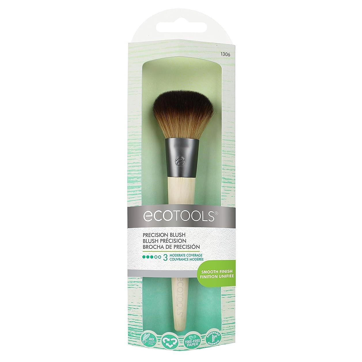 指紋ミリメートルご注意EcoTools Precision Blush Brush (並行輸入品)