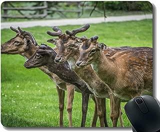 デスクトップ用滑り止めマウスマット、哺乳類狩猟グループ - ステッチエッジ