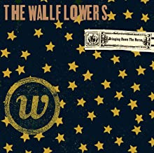Best the wallflowers mp3 Reviews