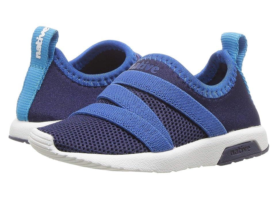 Native Kids Shoes Phoenix (Toddler/Little Kid) (Regatta Blue/Victoria Blue/Shell White) Kids Shoes