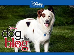 Dog With A Blog Volume 5