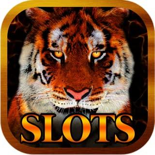 Animal Wild Slots Casino