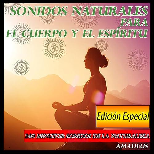 Sonidos Naturales: Sonidos de la Selva Con la Lluvia de ...