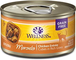Wellness Natural Grain Free Wet Canned Cat Food Morsels Chicken