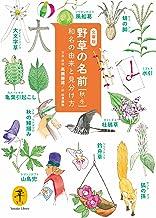 表紙: ヤマケイ文庫 野草の名前 秋冬 和名の由来と見分け方   高橋 勝雄