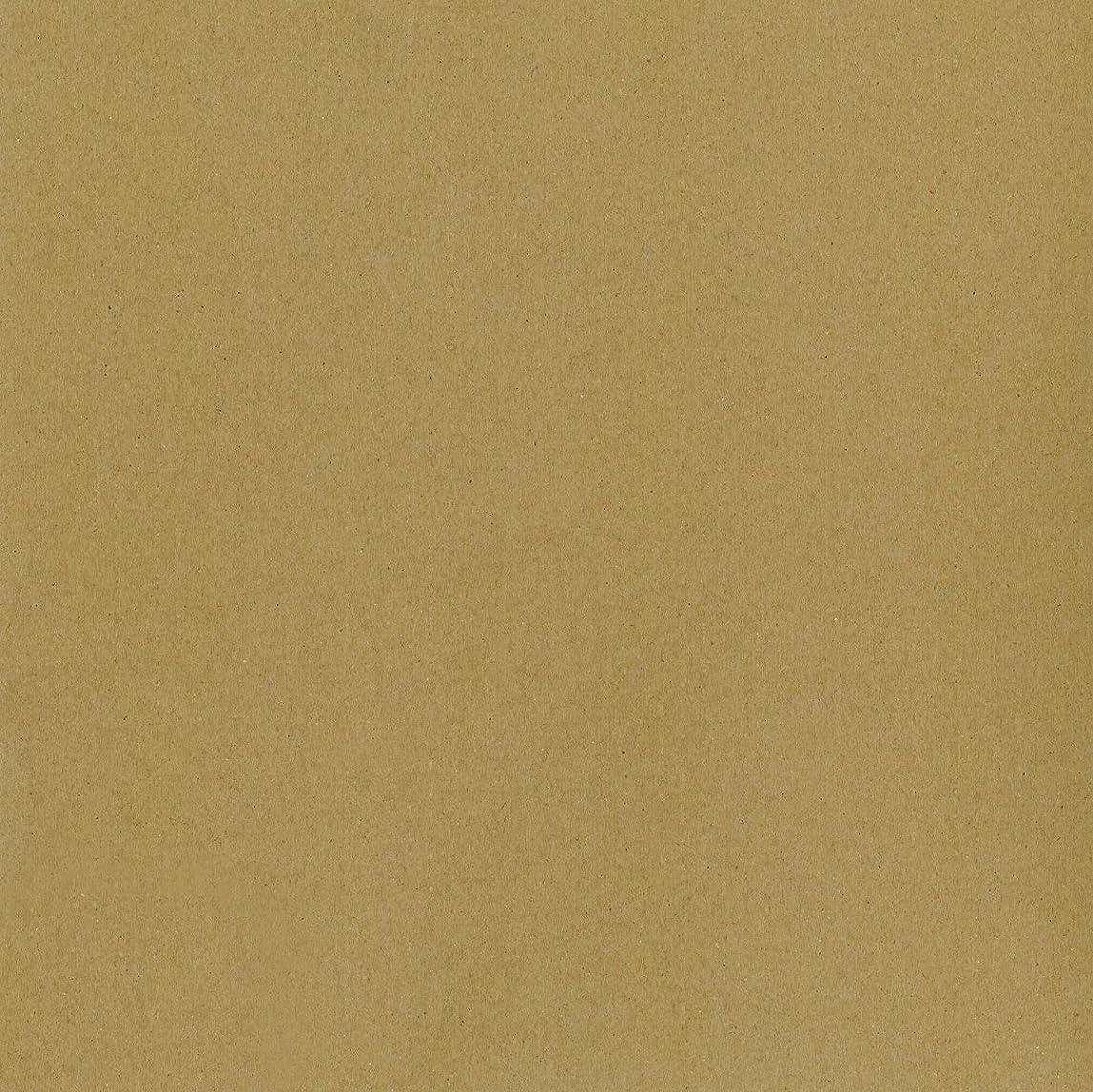 Worldwin Kraft Heavyweight Cardstock, 12 by 12-Inch, 25/Pack