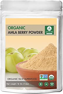 Amla Berry Powder (1lb) by Naturevibe Botanicals - Organic Gluten-Free, Raw & Non-GMO (16 Ounces)
