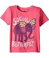 Social Butterfly Crusher (Toddler)