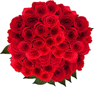 GlobalRose Red Roses - Order 100 Fresh Flowers- Express Delivery