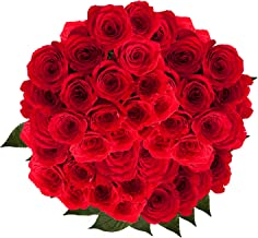 GlobalRose Red Roses- 100 Stems- Lovely Flowers For Delivery