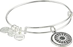 Alex and Ani - Color Infusion Cosmic Balance Bangle