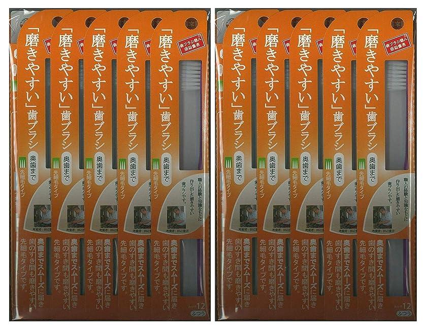 汚染する上院ゴミ箱を空にする歯ブラシ職人 田辺重吉考案 磨きやすい歯ブラシ ふつう (奥歯まで)先細 LT-12 1本入×24本セット