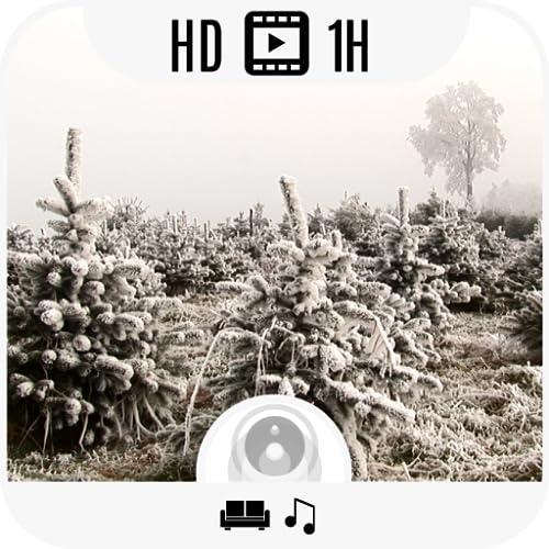Winter Emotions HD Deluxe