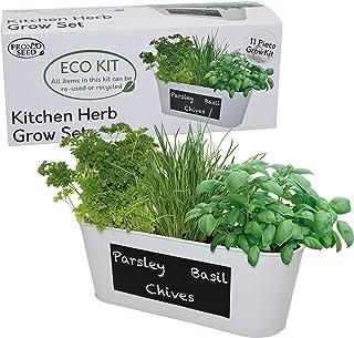 Indoor Kitchen Herb Garden Grow Your Own kit with Window Chalk Board Planter, 3 Varieties of Seed