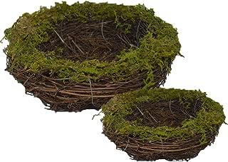 natural brand bird nest