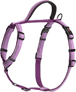 Company of Animals Halti Walking Harness for Dogs, Large, Purple