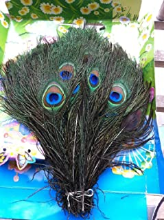 Meiyiu 100pcs Real Natural Peacock Feathers About 10-12 Inches