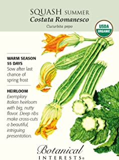 Organic Summer Costata Romanesco Heirloom Seeds - 1.5 Grams
