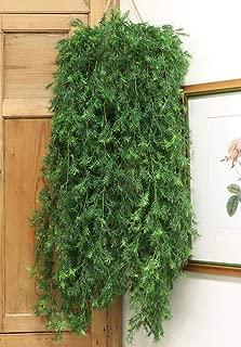 Artificial Springeri Hanging Vine Ivy Plant, 46