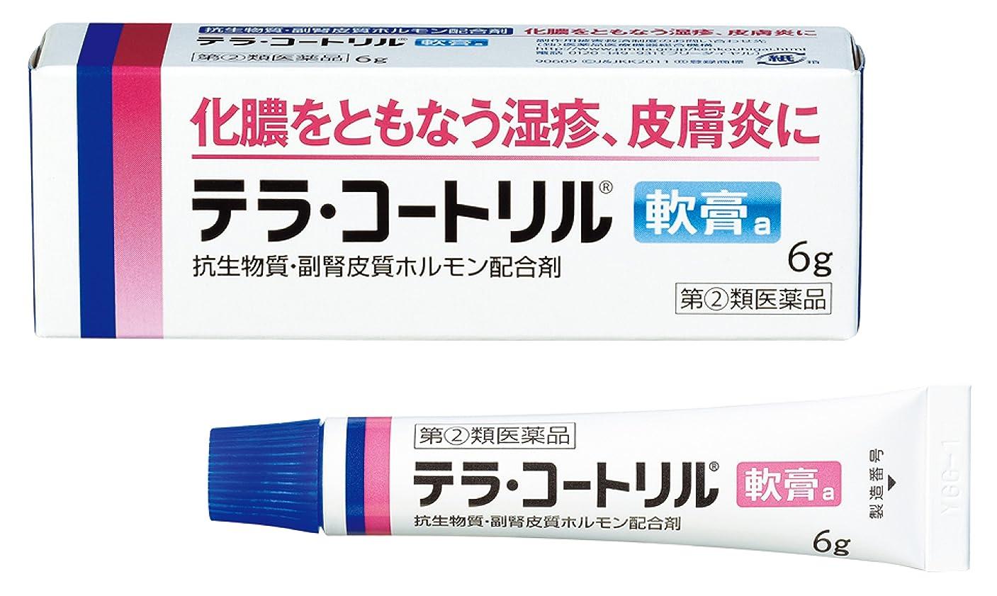 横宣伝参加者【指定第2類医薬品】テラ?コートリル軟膏a 6g