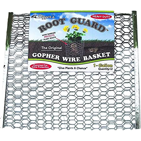 Diggers Original Root Guard 1-Gallon Heavy Duty Gopher Wire Baskets (12-Pack) – Oversized Gopher Baskets for Extra Protection – Effective Gopher Repellent for Perennials, Berries, & Vegetables