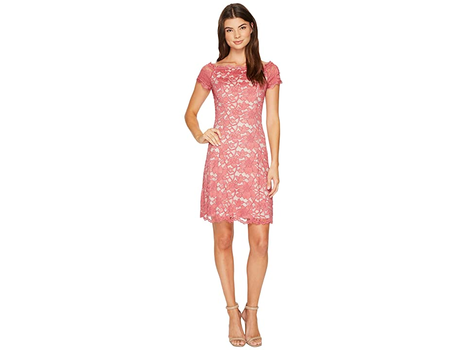 Adrianna Papell Lace Off Shoulder Fit and Flare Dress (Pale Berry/Powder) Women