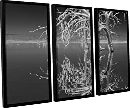 Scott Campbell's Dead Arch black and White, 3 Piece Floater Framed canvas Set 24x36