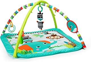 Bright Starts Zig Zag Safari, Activity Gym