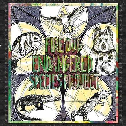 Amazon com: Hellbenders - Children's Music: Digital Music