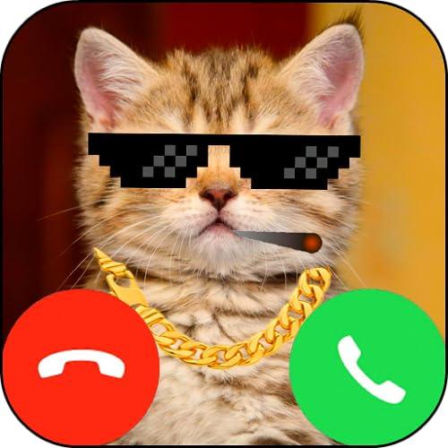 Fake Call Cat (Kitty) Gangsta Prank