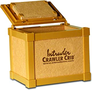 Intruder NightCrawler Worm Bait Box, Keeps Bait Fresh, Packed with Good N' Lively Worm Bedding, 8-inch x 6-inch x 7-inch