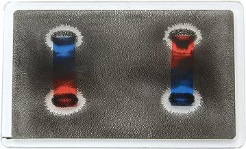 American 3B Scientific U19560 Apparatus for Demonstrating Magnetic Field Lines