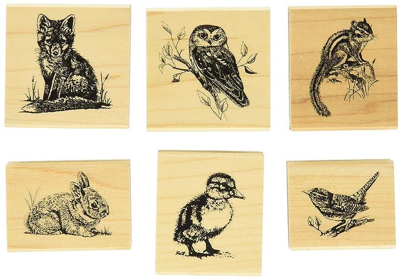 Inkadinkado Wildlife Friends Woodland Animals Mounted Rubber Stamp Set, 6 pc